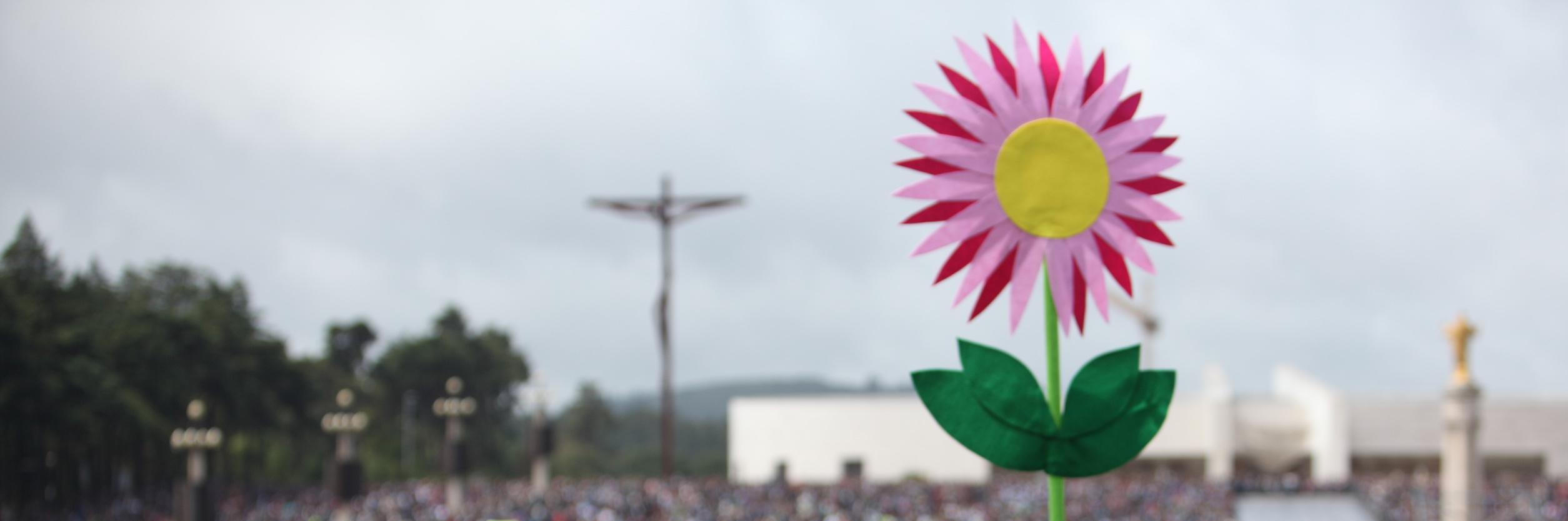 Flor no recinto.jpg