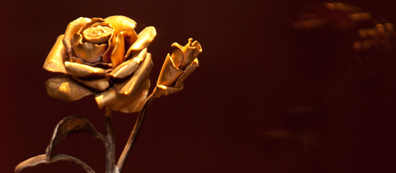 rosa de ouro.jpg